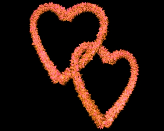 Pink Yellow Flowery Entangled Love Hearts - Valentine Clip-art