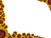 Flowery Sprinkle Rectangular Border in Red Yellow color