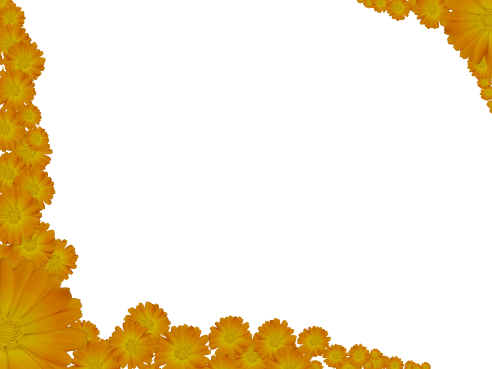 Bright Floral Corners Border in Yellow color, Rectangular perfect for Powerpoint